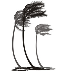 Palms in wind vector