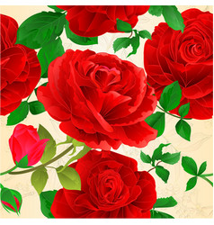 seamless texture various red roses with buds vector image