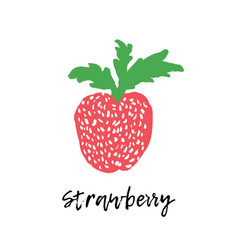 strawberry drawing isolated fruit vector image