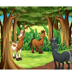 A forest with three smiling horses vector image