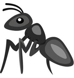 An ant cartoon vector