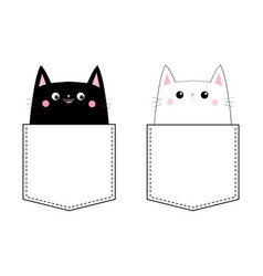 black white cat love couple in pocket pink vector image