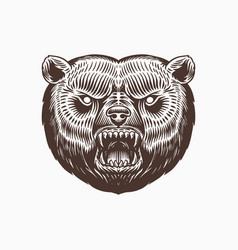 Grizzly brown bear screaming mad animal vector