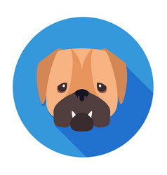 Wailful muzzle of english bulldog drawn art icon vector