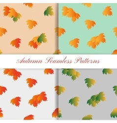 Set of Autumn Seamless Pattern with colorful vector image