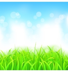 Landscape with Grass and Sky vector image
