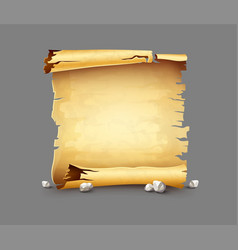 old paper scroll antique vector image vector image