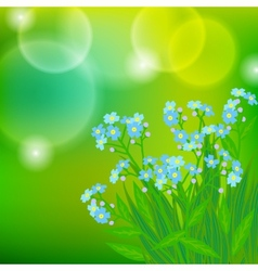 Card with forget me not flowers on sun light vector