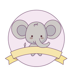 Cute elephant animal with ribbon in frame vector