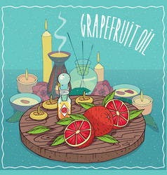 grapefruit oil used for aromatherapy vector image
