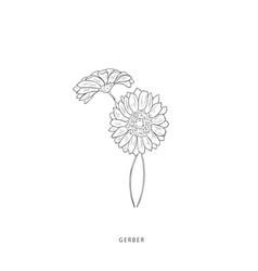 Greenery design elements botanical logos vector
