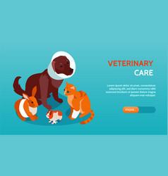 Horizontal and isometric veterinary banner vector
