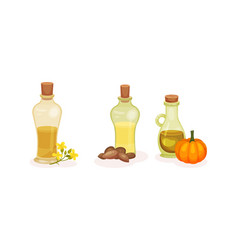 organic herbal oil poured in glass corked jars vector image