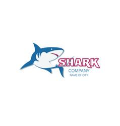 Shark the emblem of the company club vector