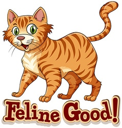 Ginger cat standing alone vector image