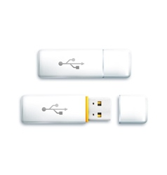 USB flash drive on white background vector image vector image