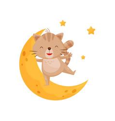 cute sleeping kitten and moon lovely animal vector image