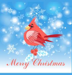 red cardinal bird vector image