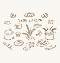 fresh bakery elements sketch vector image