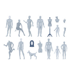 window and tailor mannequins icons collection vector image vector image