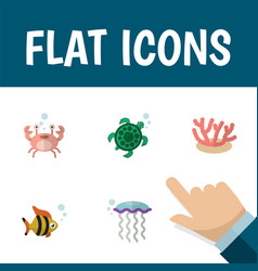 flat icon sea set of tortoise cancer seafood and vector image