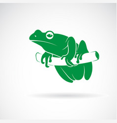 green frog on a tree branch isolated on white vector image