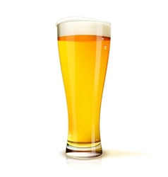 Isolated glass of beer vector