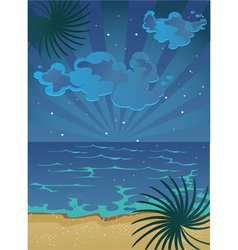 Nocturnal beach vector