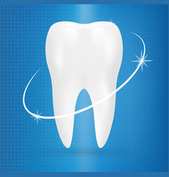 Realistic tooth poster stomatology icon isolated vector