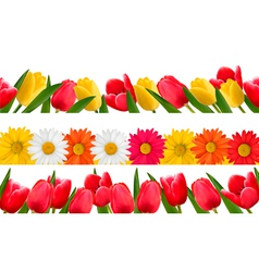 Spring flower borders vector image vector image