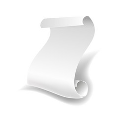blank white paper sheet roll or manuscript curved vector image vector image