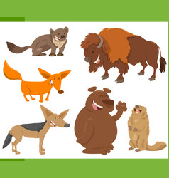 cute wild animal characters set vector image vector image