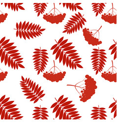 pattern with rowans vector image