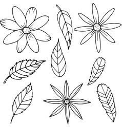 flower set in cartoon style vector image