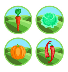 Icons of vegetables in color vector