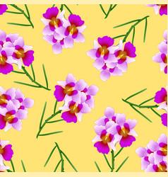 Purple vanda miss joaquim orchid on yellow vector