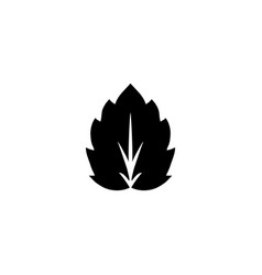 spiky leaf plant herb flat icon vector image