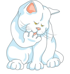 cute white cat washes vector image vector image