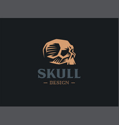 a human skull vector image