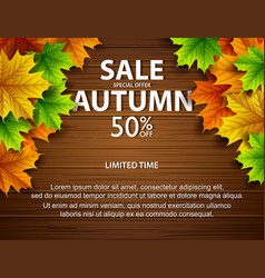 autumn sale with colorful leaves wooden background vector image