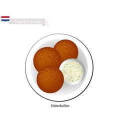 bitterballen or meatballs a popular dish in nethe vector image