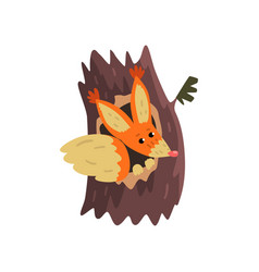 Cute squirrel sitting in hollow of tree hollowed vector