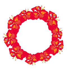 red canna lily wreath vector image