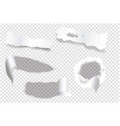 ripped of paper on a transparent background and vector image
