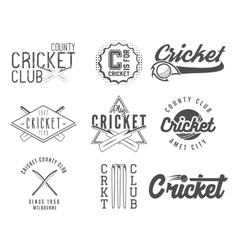 set cricket team emblem and design elements vector image