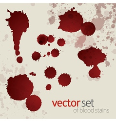 Splattered blood stains set 6 vector image