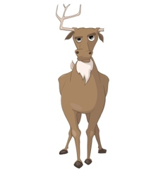 cartoon character deer vector image