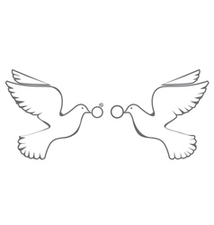 doves rings vector image vector image