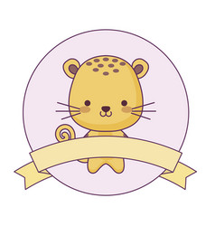 Cute tiger animal with ribbon in frame vector