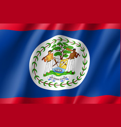 flag belize realistic icon vector image